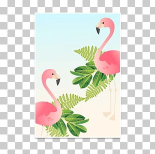 Flamingos Frames Paper Decorative Arts Poster PNG