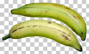 Cooking Banana Colombian Cuisine French Fries PNG