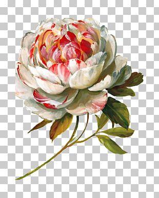 Flower Art Painting Decoupage Floral Design PNG