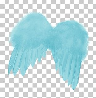 Feather Angels Angel Wing PNG