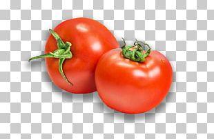 Vegetable Organic Food Fruit Eating PNG
