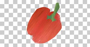 Chili Pepper Petal Tulip Fruit PNG