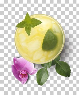 Garnish Flavor Orchidea PNG
