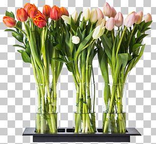 Floral Design Tulip Cut Flowers Vase PNG