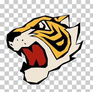 Tiger Cat Hình Tượng Con Hổ Trong Văn Hóa PNG