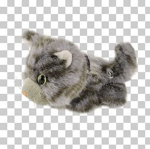 Whiskers Kitten Domestic Short-haired Cat Norwegian Forest Cat Newspaper PNG