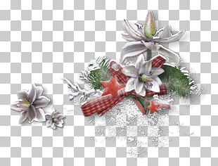 Christmas Ornament Santa Claus Christmas Tree New Year PNG