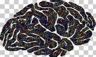 Brain Skull PNG