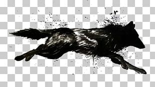 Dog Arctic Wolf Wolf Walking Black Wolf Drawing PNG