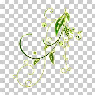 Floral Design Vignette Flower PNG