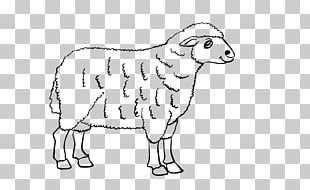 Sheep Cattle Goat Line Art Drawing PNG