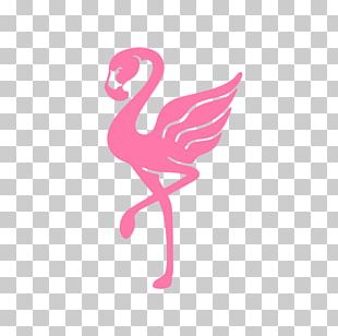 Flamingo Logo T-shirt Brand Clothing PNG