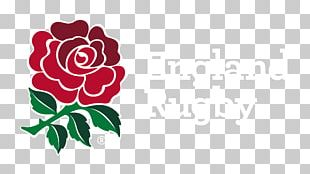 Six Nations Championship England National Rugby Union Team Wales National Rugby Union Team Irish Rugby PNG