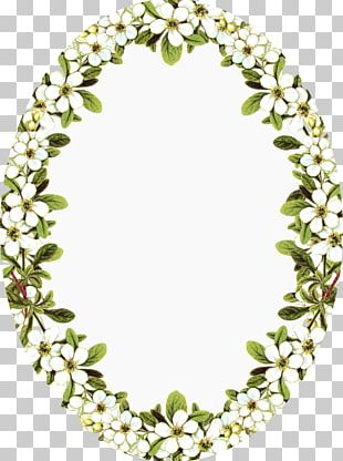 Borders And Frames Frames Flower Portable Network Graphics PNG