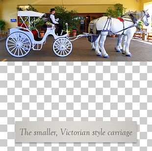 Horse And Buggy Carriage Wagon Wheel PNG