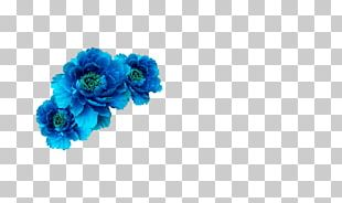 Blue Flower Crown Wreath Aqua PNG