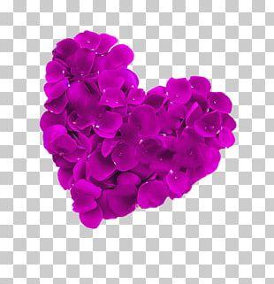 Petal Heart PNG