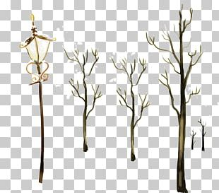 Winter Branch Computer File PNG