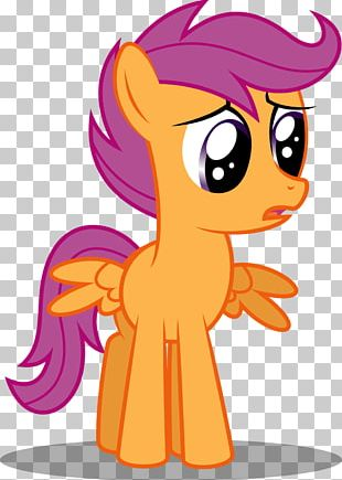 My Little Pony Rainbow Dash Scootaloo Babs Seed PNG