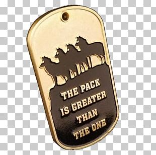 Challenge Coin Dog Tag Military United States Air Force PNG