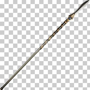 Spartan Army Spear Ancient Greece Weapon PNG