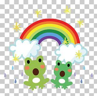 East Asian Rainy Season Frog Rainbow PNG