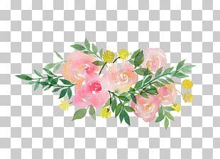 Garland Flower Pregnancy PNG