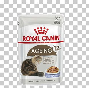Cat Food Dog Kitten Royal Canin PNG