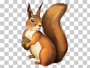 Chipmunk A Christmas Squirrel PNG