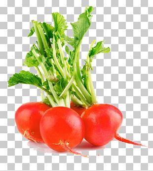 Vegetable Fruit Radish Food PNG