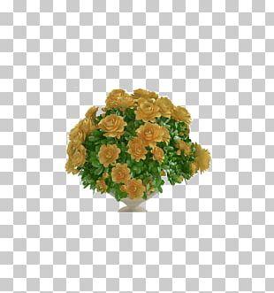 3D Computer Graphics Vase 3D Modeling PNG