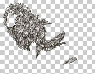 Line Art Bird Lion Siamese Cat Feather PNG