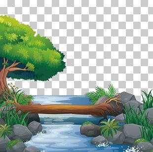 Nature Illustration PNG