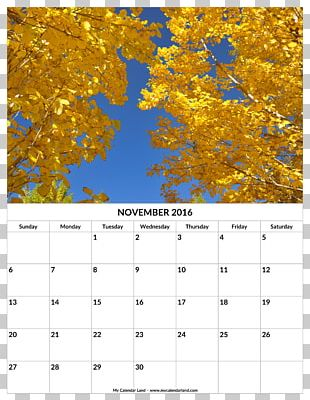 Leaf Autumn Yellow Calendar Deciduous PNG