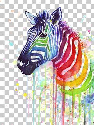 T-shirt Zebra Paper Painting Rainbow PNG