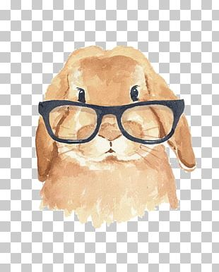 Holland Lop The Rhyming Rabbit Hipster PNG