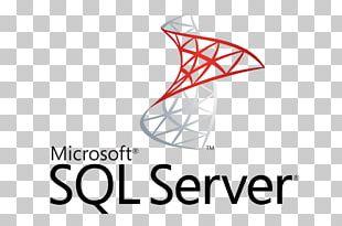 Microsoft SQL Server Computer Servers PNG