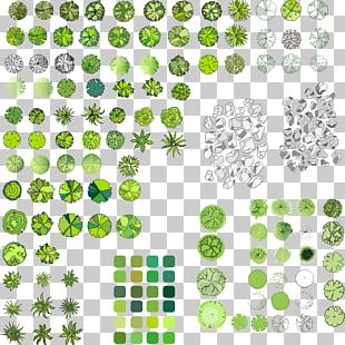 Paper Tree Scrapbooking Drawing PNG