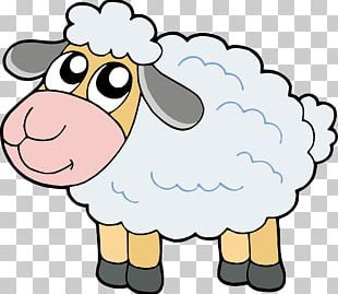 Cartoon Sheep PNG