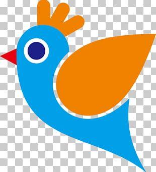 Bird Cartoon Parrot PNG