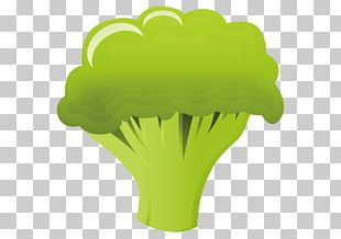 Broccoli Cauliflower Food Illustration PNG