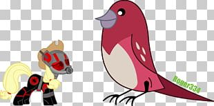 Flightless Bird Vertebrate Beak PNG