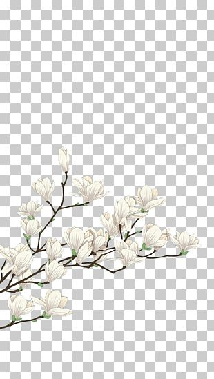 Flower White Computer File PNG