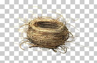 Bird Nest Fairy Tale NEST+m PNG