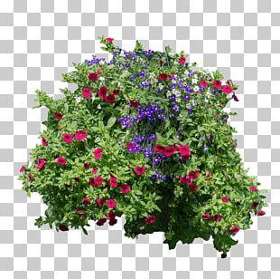 Flower Garden Plant Shrub Artificial Flower PNG
