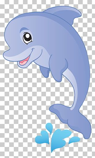 Fish Cartoon Aquatic Animal PNG