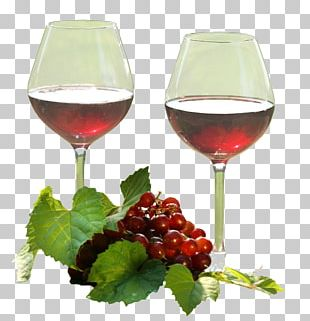 Wine Glass Red Wine The Complete Wine Guide For Beginners Wine Cocktail PNG