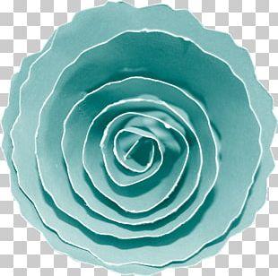 Blue Rose Garden Roses Petal PNG