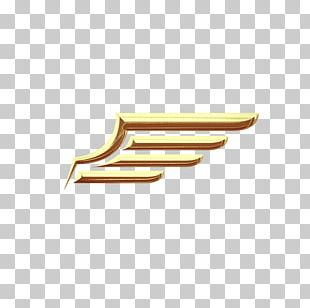 Metal Wing Gold PNG