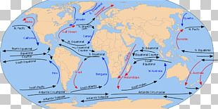 North Equatorial Current Equatorial Counter Current South Equatorial Current Alaska Current North Pacific Gyre PNG